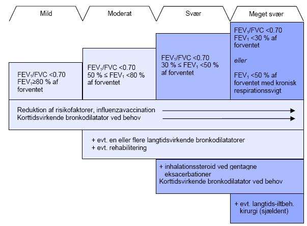 inhalationssteroid